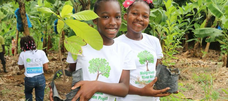 Student Volunteers join OECS and CCRIF SPC